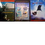 DVD - 3 Collector's Edition DVDs about Pigeons