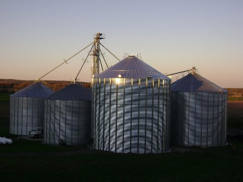 A N  Martin Grain Systems: We Sell Service - Home