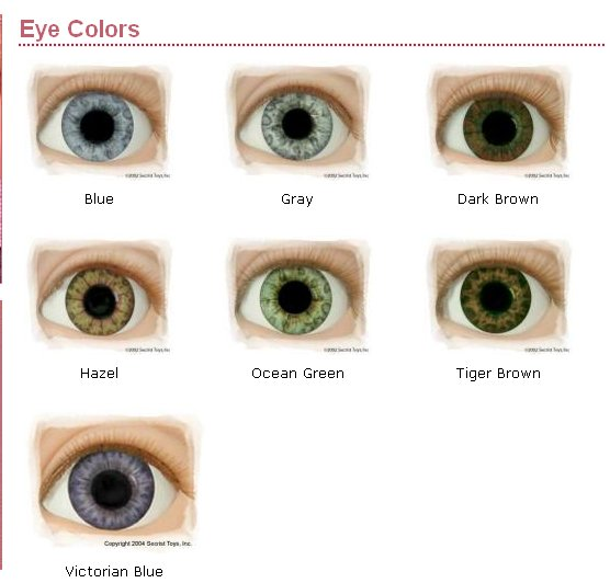 Play Days Dolls Real Brand Eye Color Chart