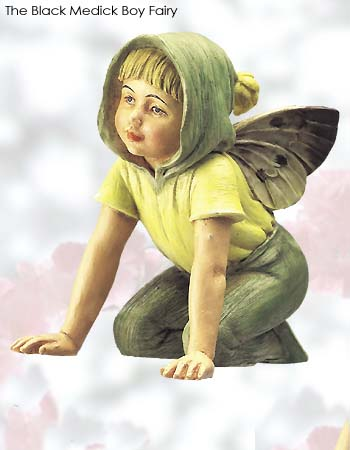 The Black Medic Boy Fairy Item 86915 Quot Retired Without