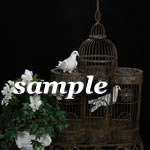 Doves - Indoor Cage - Ornate - 2 Birds