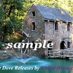White Dove Release 04