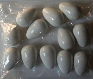 Artificial (Fake) Pigeon Eggs