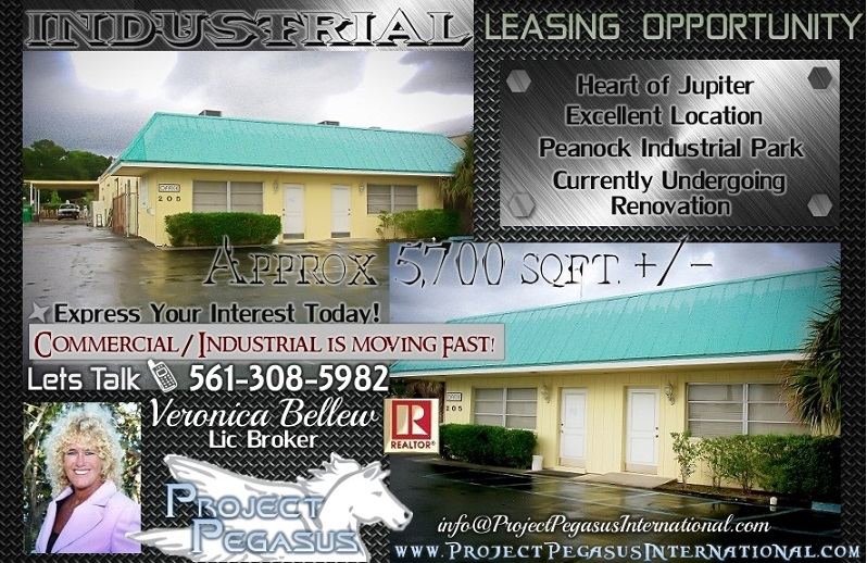 Project Pegasus Inc Global Boutique Realty Business