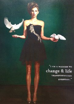 White Dove Releases, Wedding Doves, Funeral Doves & Dove