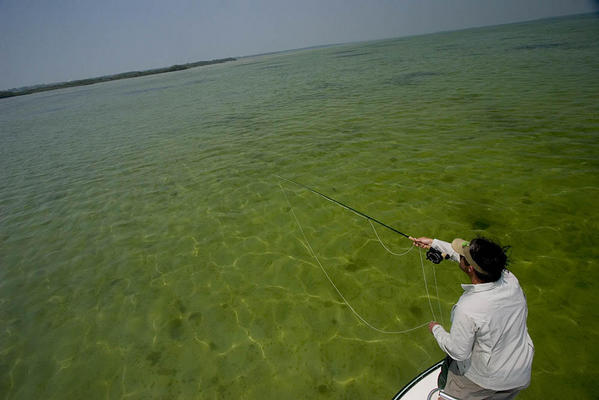 Sight Fishing in the lower Florida Keys