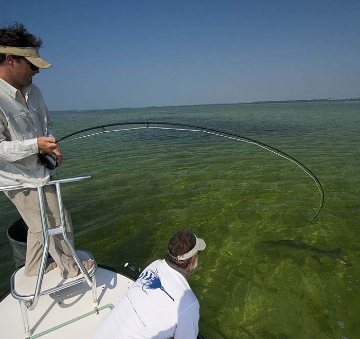 Fly Fishing for tarpon in Big Pine Key