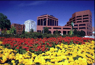 Harris group realty inc simply superior service in colorado as the popularity of colorado springs real estate continues to grow new upscale developments are joining many established neighborhoods in north colorado mightylinksfo
