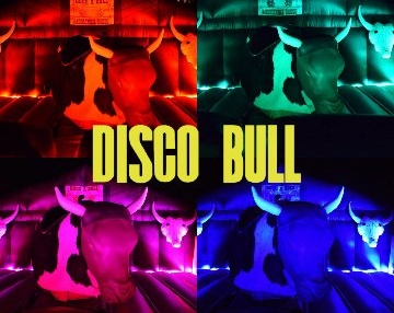 Disco Mechanical Bull