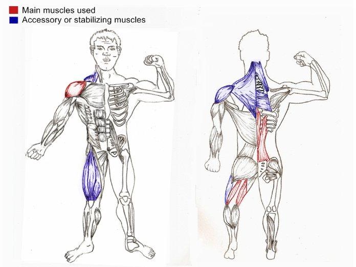 Single Arm Kettlebell Swings Exercise Technique