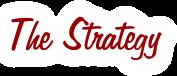 The MJVI Strategy