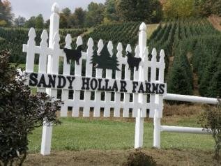 Sandy Hollar Farms
