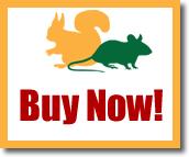 Buy RoBait Now!