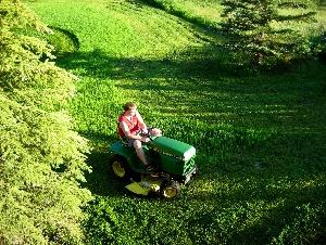 Perfect Lawn Programs