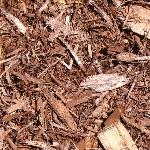 Burnt Mahogany Cedar Mulch