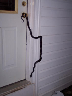 If You Missed Reading This Until After A Snake Entered Your House Then Our Advice Is Quite Diffe We Never Recommend Anyone To Attempt Removing