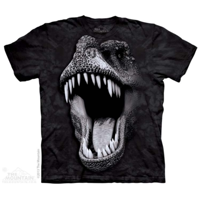 Dinosaur T Shirts - The Mountain T Shirts - Head Space Stores