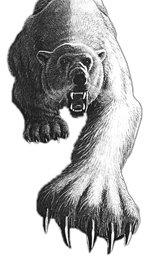 Lono Polarbear