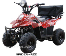 110cc Kids ATV   www.countyimports.com