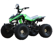 Youth 125cc ATV Fully AutoMatic BMS
