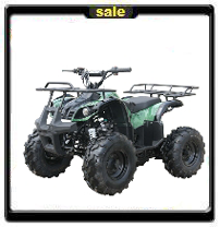 125cc Youth ATV  Best price best advice