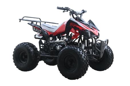 Kids Atv For Sale >> Cms Viper 125cc Kids Atv Fully Automatic Reverse Free Shipping Cs 3054