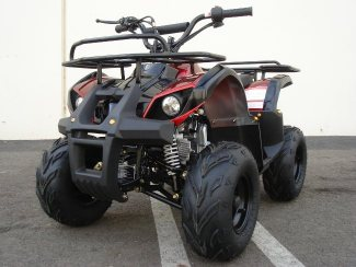 110CC TRAIL ATV - FREE SHIPPING - ON SALE NOW