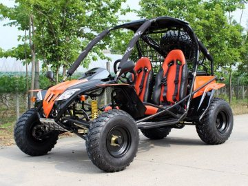 200cc go kart for sale