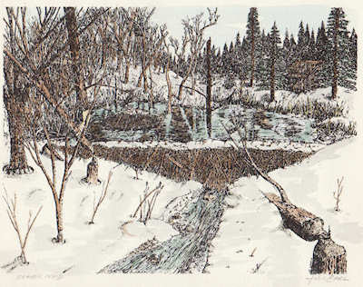 """Beaver Pond"" hand colored print by John Entrekin"