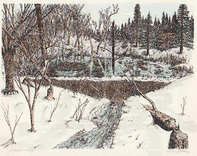 """Beaver Pond"" hand colored print by John Entrekin"