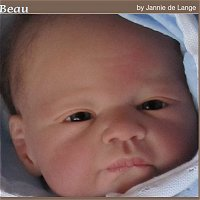 Beau Doll Kit comes unpainted, but this is an examples of how doll could look after reborning.