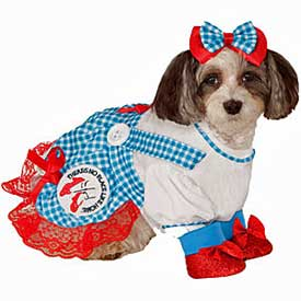 Dorothy-Wizard-of-Oz-dog-costumes