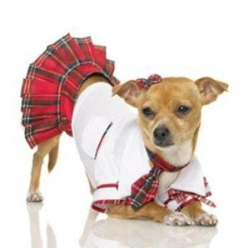 leg avenue School girl dog Costume dress