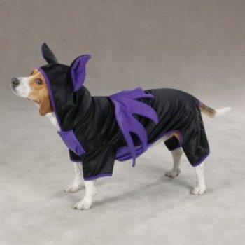 Bat  like Dog Costumes for Halloween