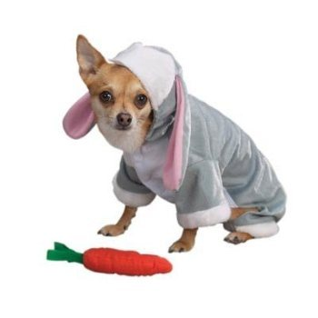 bunny rabbit Easter costume for pets