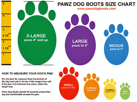 dog rubber pawz boots