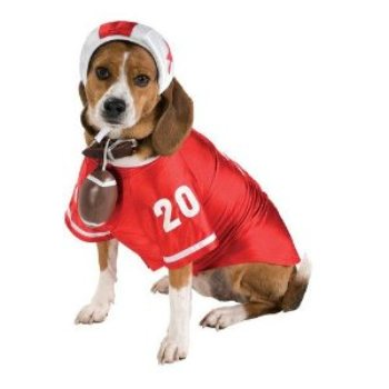 red and white football player dog costume