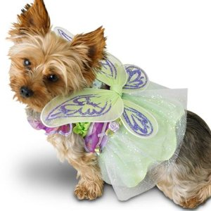 green tinkerbell fairy dog costume