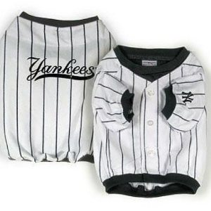NY Yankees dog pinstipe jersey