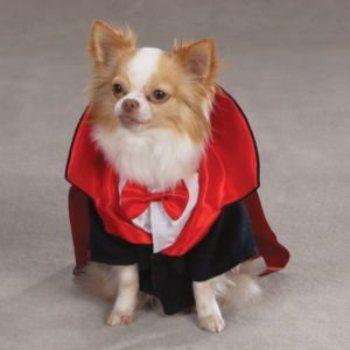 Dracula scary Halloween costume