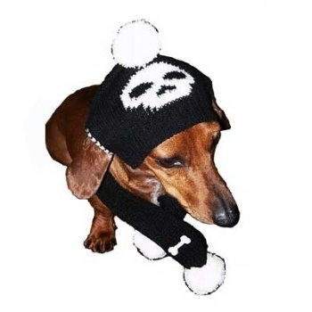 black and white skull and crossbones  Boy Dog Hat & Scarf