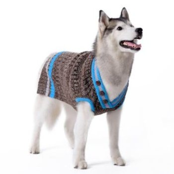 grey and blue v neck pullover boy dog sweater