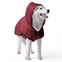 water resistant classic dog trench coat with black trim