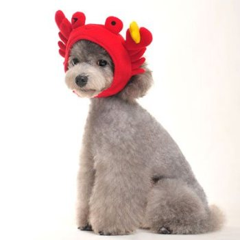 velcro closure red crab hat for dogs