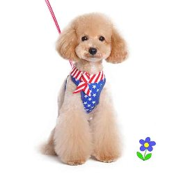Dogo EasyGO red white and blue Harness USA