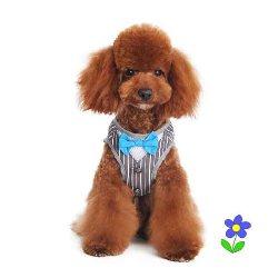 Dogo SnapGO Bowtie Gentleman Harness