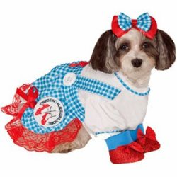 Dorothy from The Wizard of Oz Girl Pet Costume