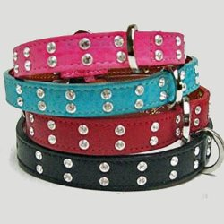 Double Row of clear swarovski crystals on a leather dog collar
