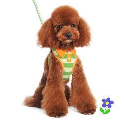 Dogo EasyGO Polo Green dog harness