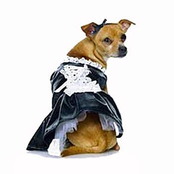 black and white french maid small dog costume